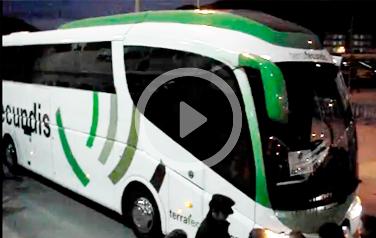 Autobús de TerraFecundis transportando a la selección absoluta de fútbol en Cartagena